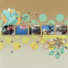 5 photos + hexagons