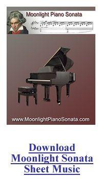Listen To Beethoven's Moonlight Sonata | Moonlight Piano Sonata