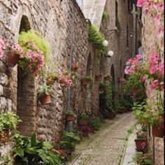 A street in Giverny, France