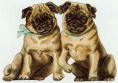 Vintage Scrap - dogs