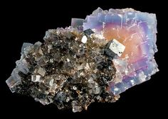 Fluorite with Galena on Sphalerite matrix  Minerva #1 Mine, Hardin County, Illinois