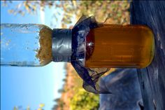 How To Harvest Honey From A Comb Using Two Mason Jars