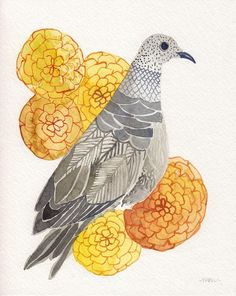 Morning dove and Zinnias - Original watercolor painting