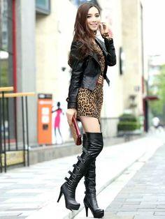 Leopard asian.