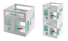 Umbra Fish Condo : Wantist
