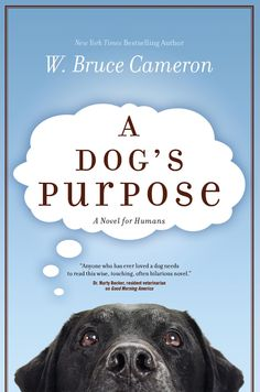 Bucket List. could be an enjoyable read about a reincarnating dog. :D