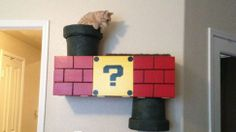 No Cat Should Be Without A Mario Warp Pipe Climbing Box
