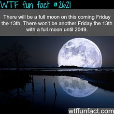 wtf funfacts