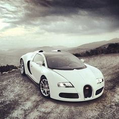Bugatti venturing into the Wilderness