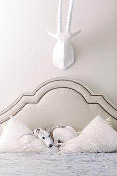 bedroom in whites + creams