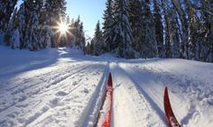West Yellowstone Cross Country Skiing - Want to go someday