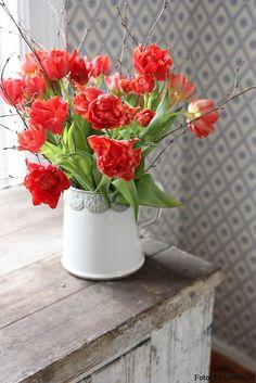 Beautiful tulips - floral arrangement