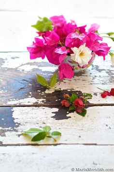 Pretty Flowers on FamilyFreshCooking.com