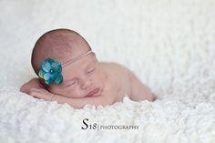 babies photography, babi photographi, newborn pic, color, photo shoot, infant photographi, babi greatinfantphotographi