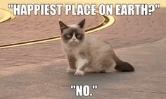 Animated LIVE Grumpy Cat Has The Worst Day At Disneyland Ever. Grumpy Cat Quotes #GrumpyCat #Meme #Humor