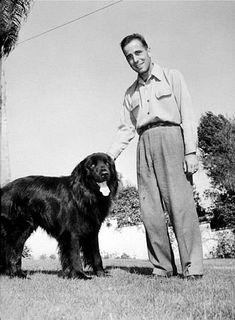 Humphrey Bogart with his black Newfoundland dog, Cappy.