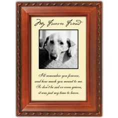 """This picture frame is a perfect way to remember your pet.     Verse: """"I'll remember you forever, and how much you meant to me. So don't grieve, it was just my time to leave."""" $16.99 cats, memori, friends, belov cat, forev friend, picture frames, honoring pets, pictur frame, cat book"""