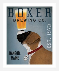Boxer brewing co.