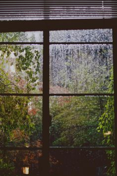 Window overlooking the garden on a rainy day ♥
