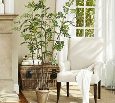 faux potted ashbury plant