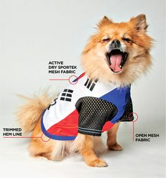 My Bro, a 32 piece collection of 2014 World Cup athletic jerseys for dogs by Alexander Campaz