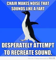 these awkward penguin memes crack me up!!!