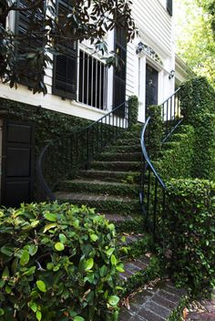 Love the outdoor, vine covered stairs... love love love.
