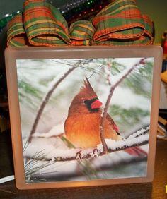 Golden Cardinal Glass Block Light by Eworx on Etsy, $25.00