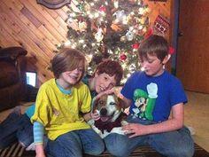 christma miracl, dogs, famili, alaska, christmas, blind dog, blinddog, homes, 10 mile