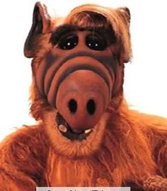 ALF! From the planet Melmac!