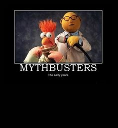 mythbusters, tested, beaker, muppets