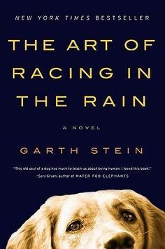 The Art of Racing in the Rain by Garth Stein. If you have a dog, read this!