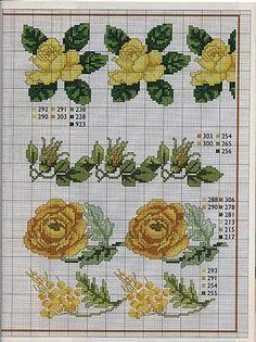 Cenefas de bulbosas y flores de primavera amarillas