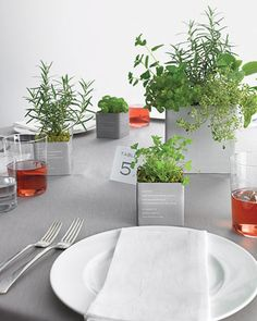Farmers'-market herbs planted in sleek pots serve as centerpieces and wedding favors