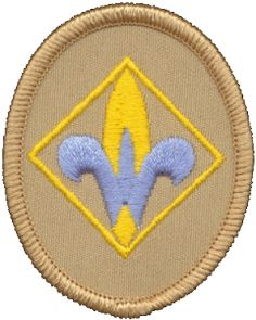 Helps and Requirements for Webelos