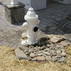 Dog water fountain idea