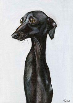 Unsurely - Italian Greyhound Dog Print - 5 x 7 inch. £15.00, via Etsy.