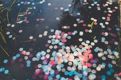 dissolving confetti, photo by Mike Olbinski Photography http://ruffledblog.com/arizona-wedding-with-architectural-history #ecofriendly #weddingideas