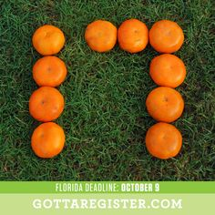 Orange you glad we told you to visit http://GottaRegister.com, there are only 17 days to the voter registration deadline in Florida!