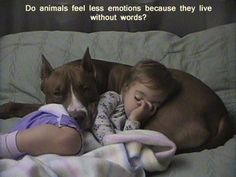 Just imagine how differently some would be treated if they could speak of the abuse and mistreatments theyve endured.