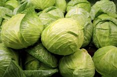 Cabbage -- here's why you should add it to your diet. Cathy McIsaac, RD, registered dietician, has tips and a recipe for you! #diet   #nutrition   #cabbage   #vegetables   #health   #recipe   #healthyrecipes   #healthyeating diet nutrit, regist dietician, health recip