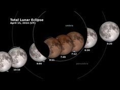 NASA | Need To Know: Lunar Eclipse and LRO