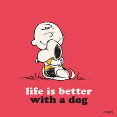 Life is better with a dog--<3