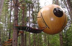 HANGING TREEHOUSE