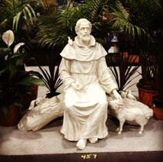 This is our St. Francis statue which we displayed at the Los Angeles Religious Education Congress in March 2014.