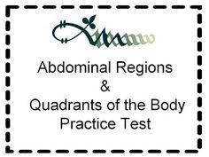 Student Survive 2 Thrive: Free Medical Terminology Practice Test: Abdominal Quadrants and Regions