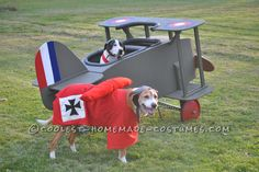 High Flying Snoopy Versus The Red Baron Pet Dog Costumes... Coolest Halloween Costume Contest