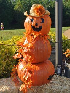 stylish modern pumpkin decorations