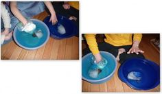 Whale Unit (and the Arctic) — Icebergs, Blubber experiment, Buoyancy and more