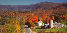 Every fall, New England rolls out a foliage carpet dressed in blazing oranges and reds, yellows and purples. It's the perfect time to visit the region. If you're planning a trip to the region, here are the most stunning places to see fall foliage state-by-state.